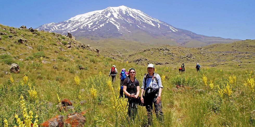 Urlaubskino: Ararat
