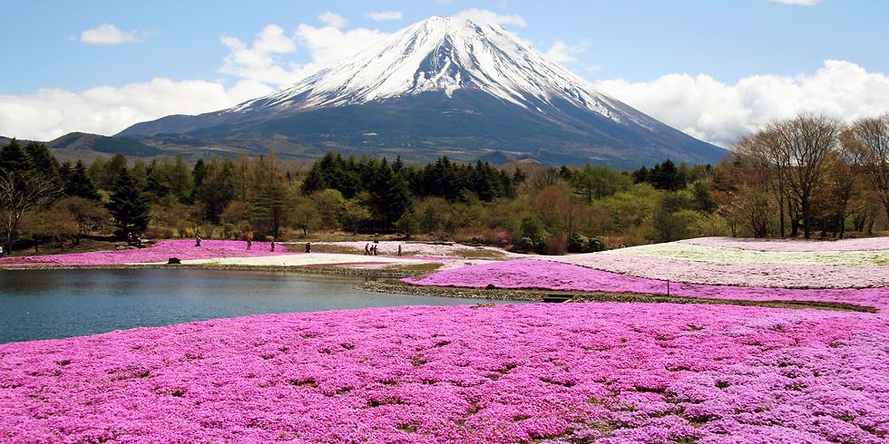Urlaubskino: Japan