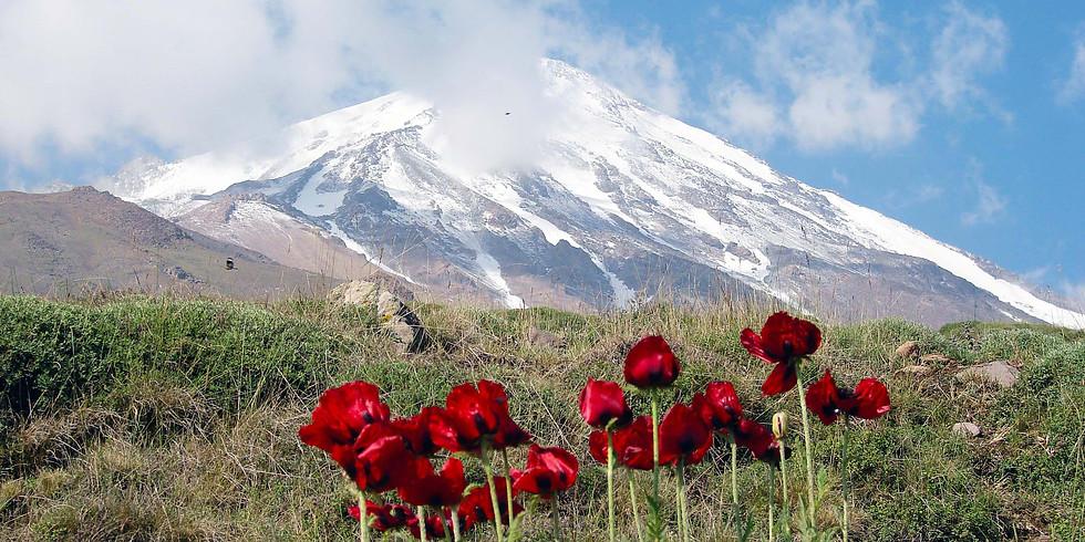 Ararat & Damavand