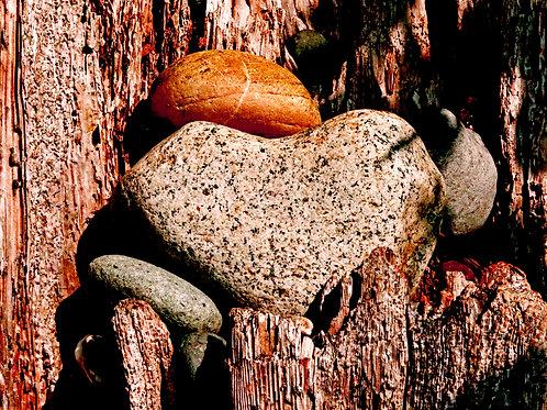 Rock of Love ( Framed 8x12  Print)