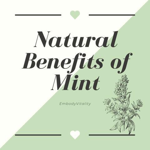Natural Benefits of Mint.