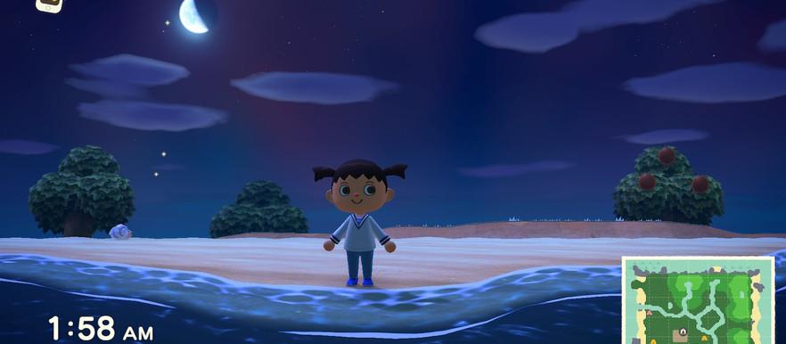Animal Crossing: New Horizons Review NeighborHood Watch
