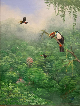 """Huile sur toile """"White-throated toucan"""" (40x30cm)"""