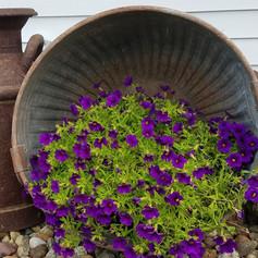Antique metal bushel basket