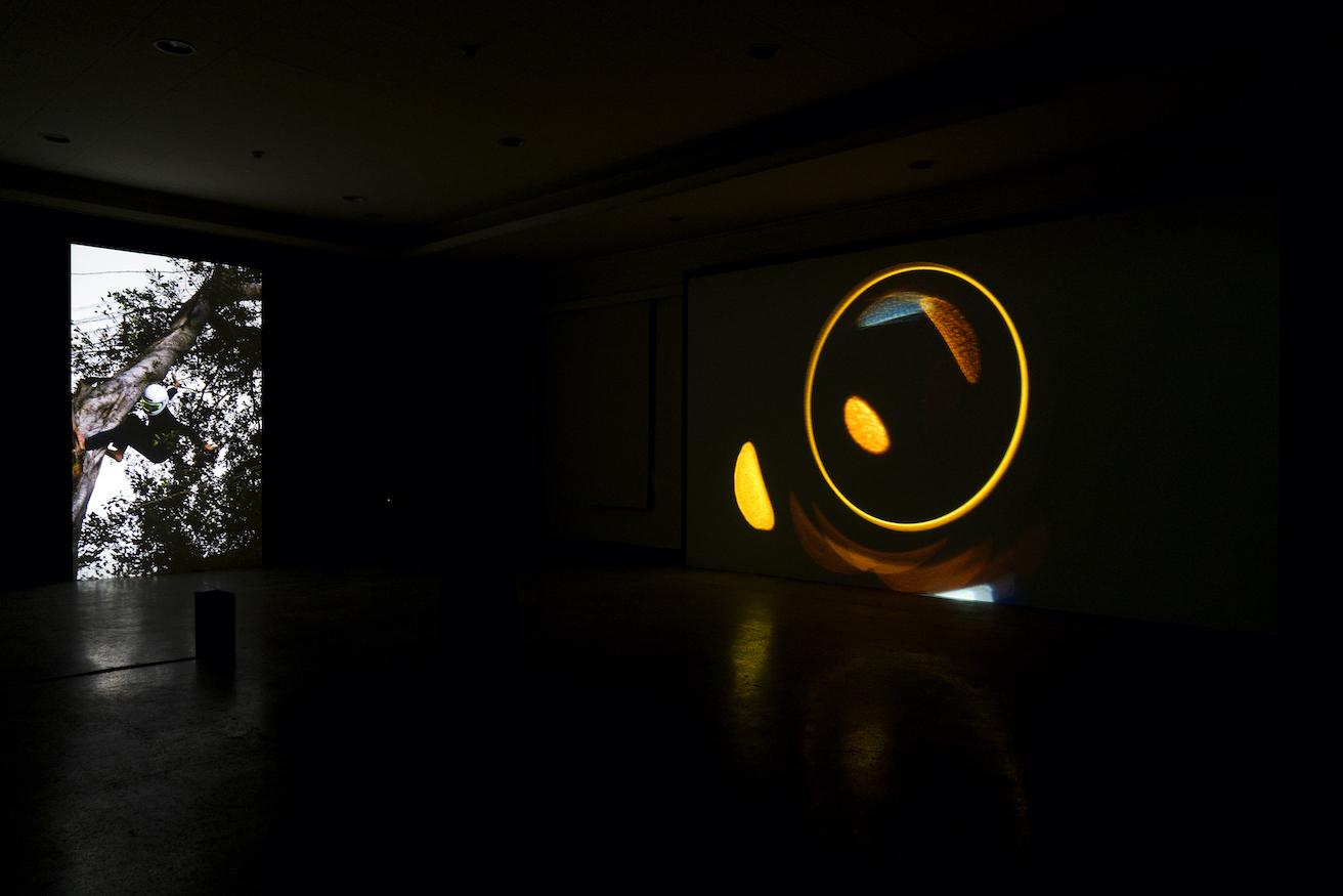 exhibition 隱身瞞風