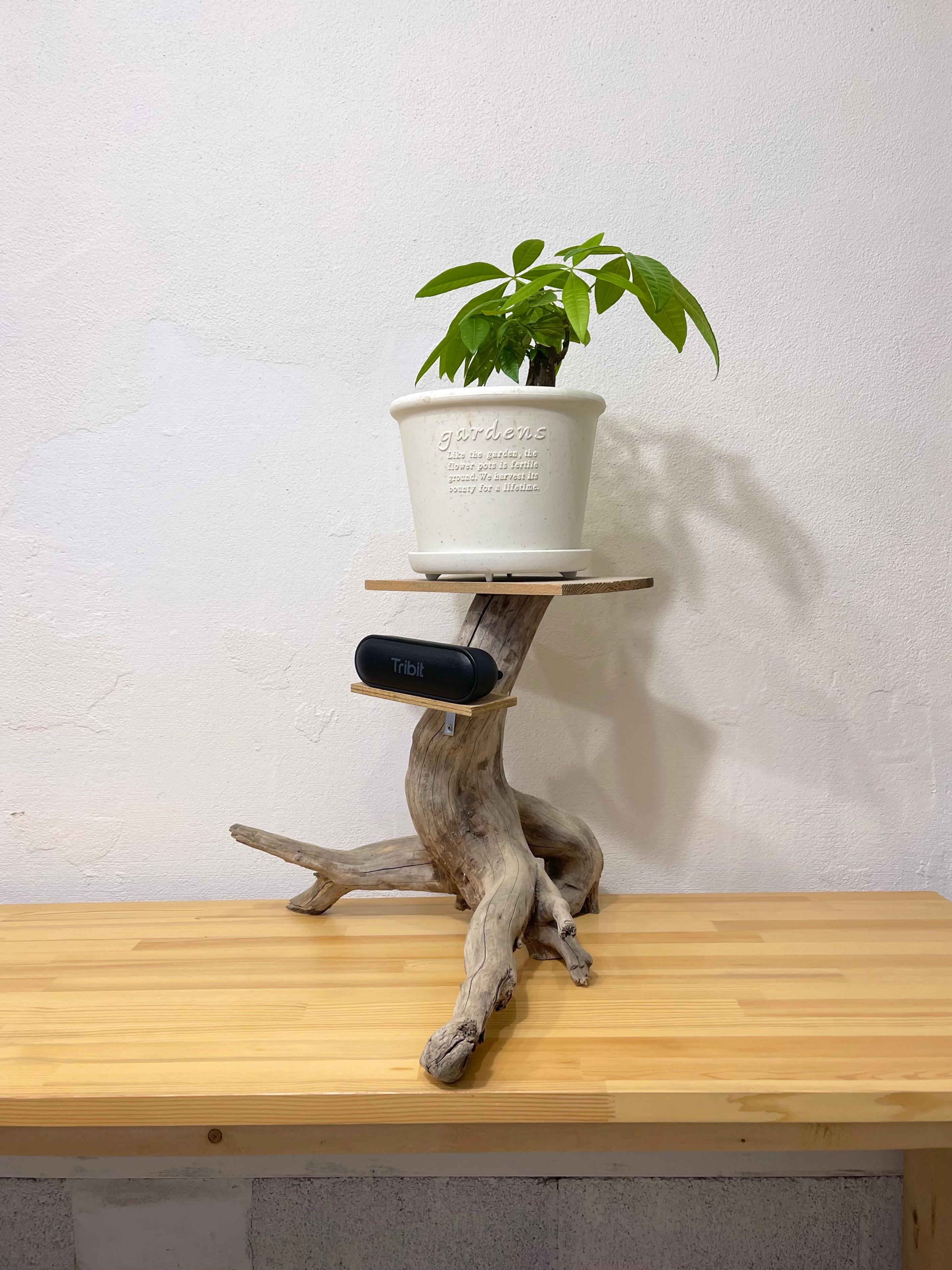 ビーチコーミング&流木を使った家具作り