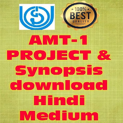 AMT-1 PROJECT  HINDI(PROJECT WORK)