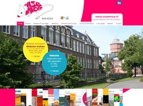Nieuwe cursus Website maken voor Kunstenaars en ZZP'ers in Het Paleis Groningen - start 17 sept