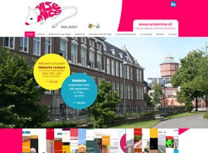 Cursus Website maken Groningen bij Wisemice