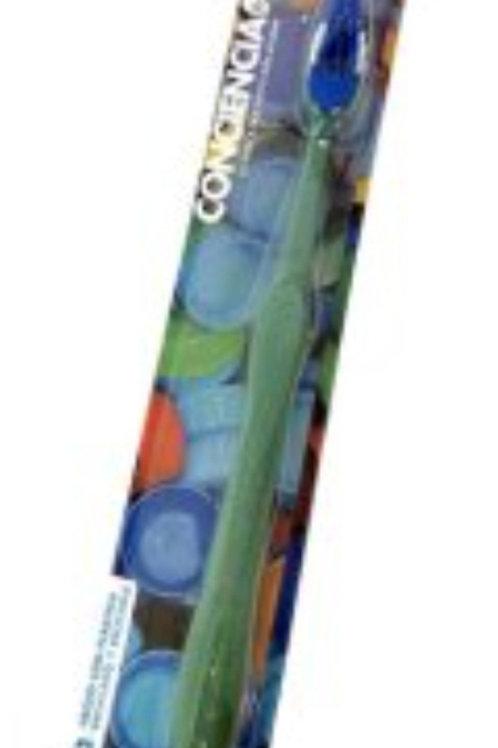 Cepillo dental adulto reciclado art.20269
