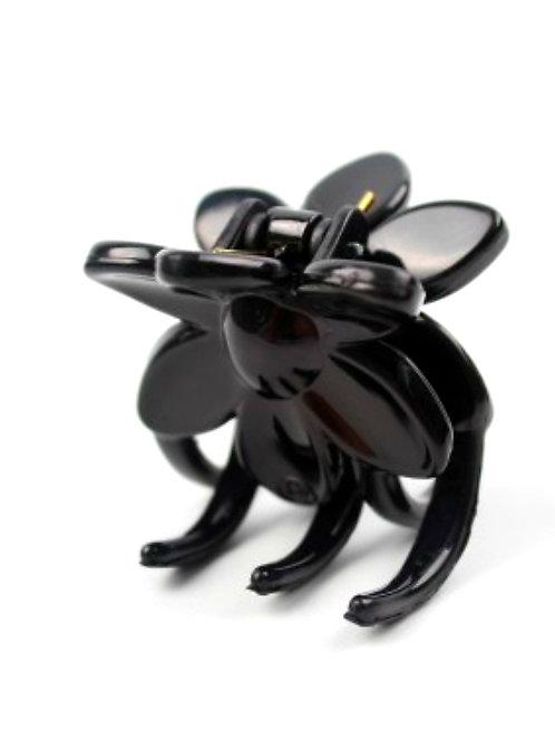 Broche Carey negro 6093/4 x 6 unid.