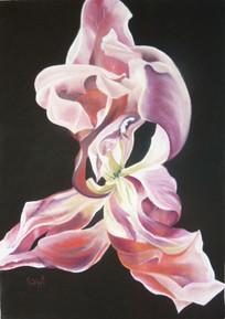 Arabesque florale