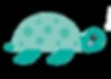 stokes%20ahead_characters_turtle_edited.