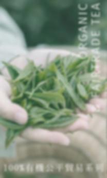 第二欄_香港花草茶品牌_02.jpg
