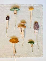 Clay Mushroom Plant Decor Workshop (1)