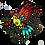 Thumbnail: ציפור צבעונית