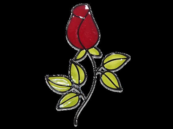 ורד בורדו