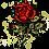 Thumbnail: ורד אדום