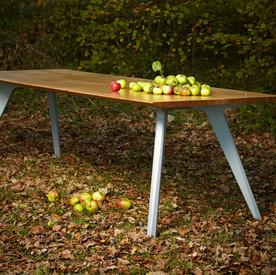 TipToe table profile.jpg high res.jpg