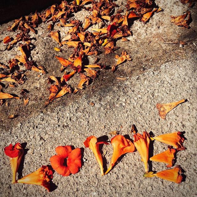 ggw.love.jpg