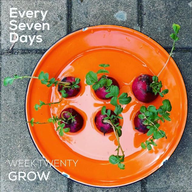 esd_grow20.jpg