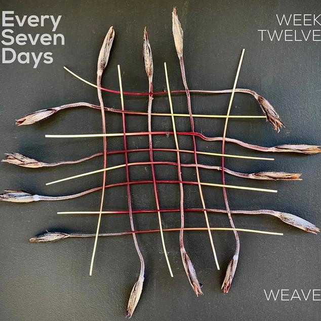 e7d_week12.jpg