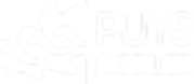 Logo Puys Mobilier blanc.png