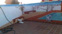 el rincón de la terraza
