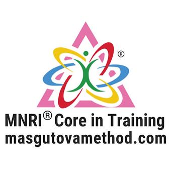 Copy of MNRI CiT logo.png