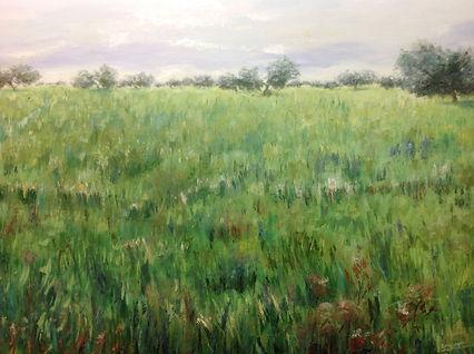 Campo de trigo, oleo sobre lienzo, 80x1.