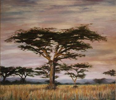 africa, puesta de sol. 1x1. oleo sobre l
