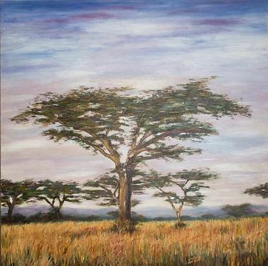 Acacia 1 firma 90x90 (Small).jpg