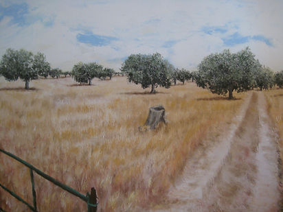 Dehesa en Valdecaballeros, Badajoz,,oleo