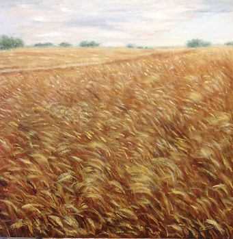 Campo de trigo, oleo sobre lienzo, 90x90