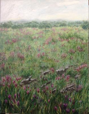 campo con cantueso,oleo sobre lienzo, 90