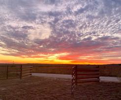 Magnificent sunrise