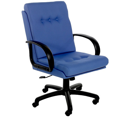 Executive 2 Medium Back Chair