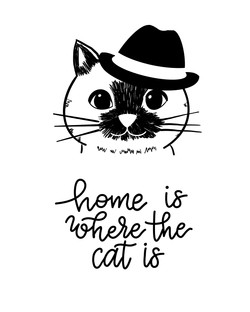 Home_Is_Where_The_Cat_Is 2