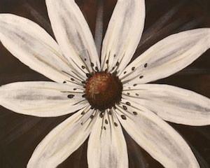 white_daisy.jpg