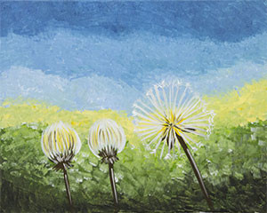 dandelion_trio.jpg