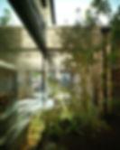 1373-08A G6P CMA TREE.jpg
