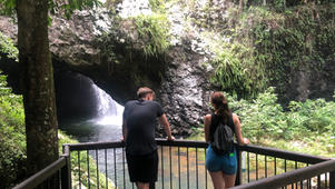 Natural Bridge + Springbrook