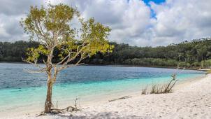 Fraser Island 4WD Jeep Tour