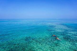 snorkeling-1209517_1920.jpg
