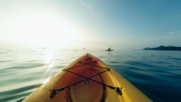 Kayak + Dolphin Tour