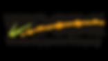 woodslogo-300x169.png