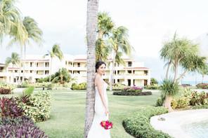 bride081.jpg