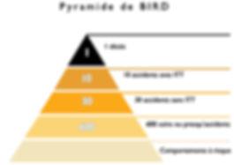 pyramide de BIRD.jpg