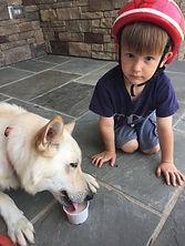 Tiny Dog with Aurora_edited.jpg