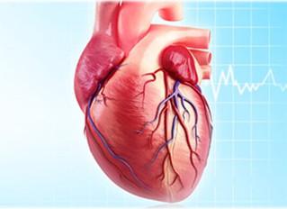 3D Printing the Human Heart